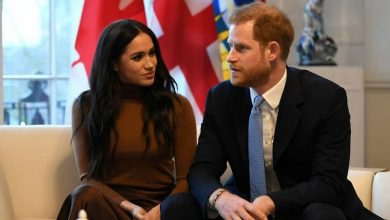 Photo of Meghan Markle & Prince Harry Are Nothing More Than Professional Freeloaders!
